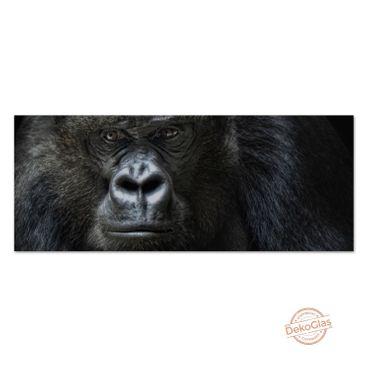 Gorilla – Bild 1