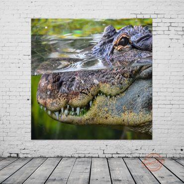 Amphibie Krokodil – Bild 2