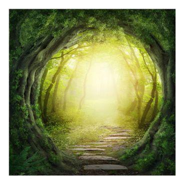 Das Waldloch – Bild 6