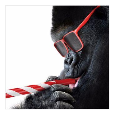 Gorilla – Bild 5