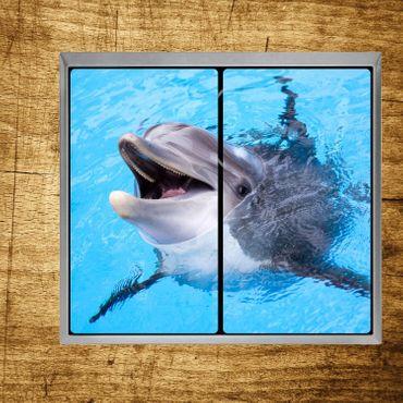 Glückliches Delphin – Bild 3