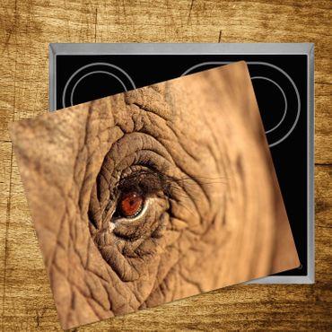 Elefanten-Auge – Bild 4