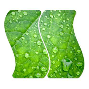 Grünes Blatt – Bild 1
