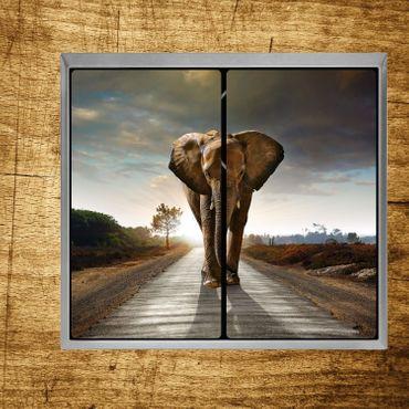 Elefant unterwegs – Bild 2