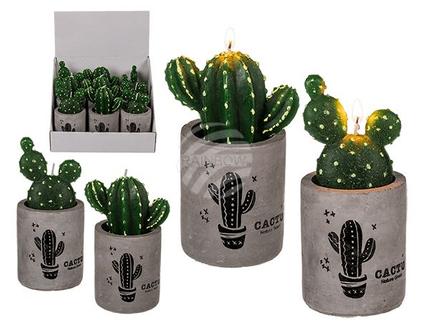 121111 Kerze, Kaktus, in Zement-Topf mit Kaktus, ca. 6 x 14 cm, 2-fach sortiert, 9 Stück im Display, 1080/PAL