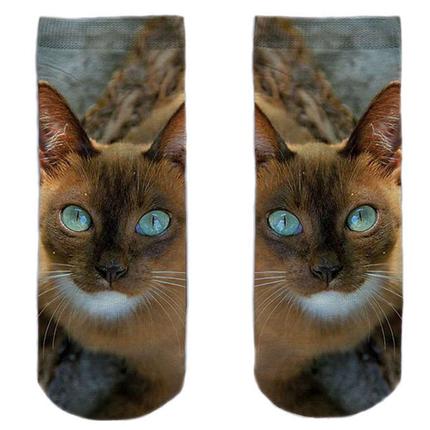 SO-L191  Motiv Socken multicolor Katze süß