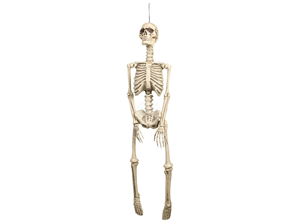 BLD-74368 Dekoration Skelett (92 cm)
