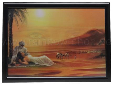3DB-415 3D Bild Wüste & Oase ca. 50 x 70 cm