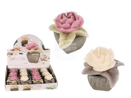 101125 Kerze, Rose, im Keramik-Topf, altrosa & cremefarben sortiert, ca. 8,5 x 9 cm, 12 Stück im Display