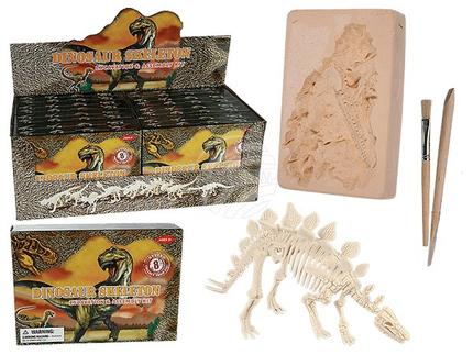 11-2003 Ausgrabungsset, Dinosaurier Skelett, ca. 4,5 x 18 cm, 8-fach sortiert, 8 Stück im Display, 800/PAL