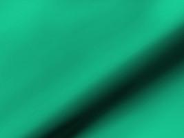 Dekostoff blickdicht DELIA 42148135404 Uni grün