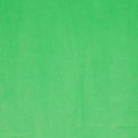 Möbelstoff Chivasso CITY VELVET VOL.2 CA7832/037 Uni grün