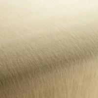 Möbelstoff Chivasso HOT MADISON RELOADED CH1249/046 Uni beige