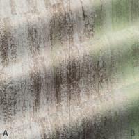 Dekostoff Vorhangstoff schwer entflammbar DIMOUT Streifenmuster grün