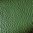 Dickleder grün - grüne Lederhaut 001