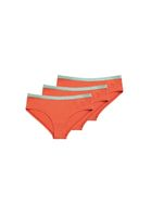3 Pack TT21 Panty Lace Band Tangerine/Cabbage
