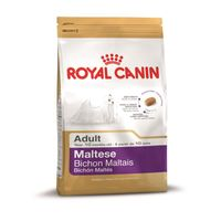 Royal Canin Club Breed Maltese 24 Adult 1,5kg