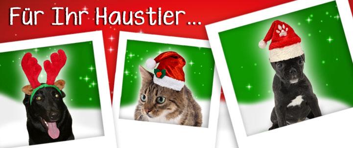 Weihnachtsmützen für Tiere