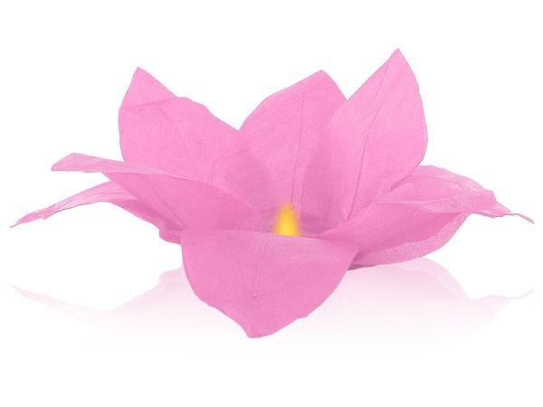 Fleur de Lotus flottante de l'eau lanternes rose incl.bougie