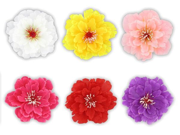 Hawaii Haarblume Haarblüte Honululu alle Farben – Bild 1