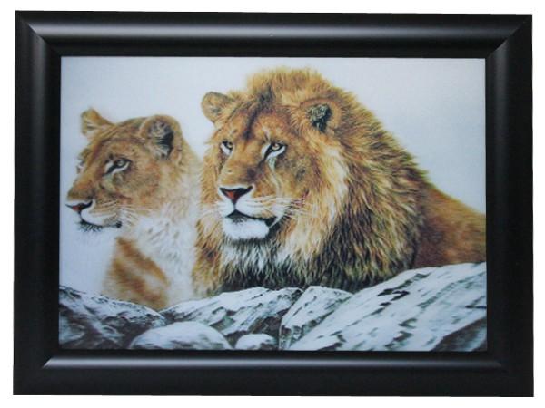3D Effekt Bilder Wandbild Effektbild Bild Wandbilder mit Rahmen Löwen 102