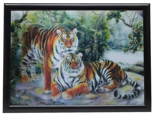 3D Effekt Bilder Wandbild Effektbild Bild Wandbilder mit Rahmen Tiger 304