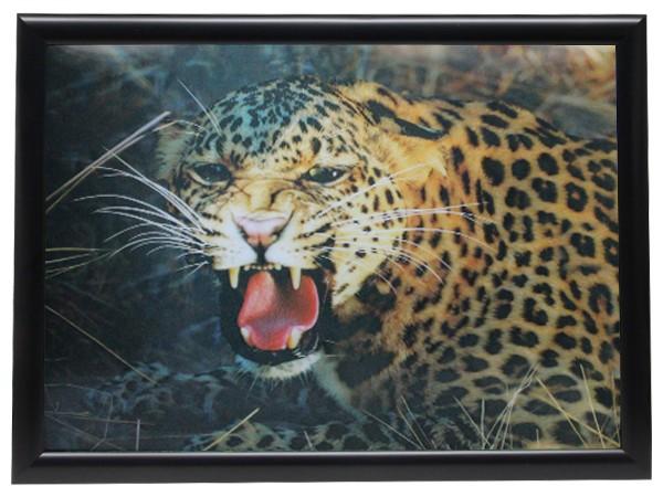 3D Effekt Bilder Wandbild Effektbild Bild Wandbilder mit Rahmen Leopard 307