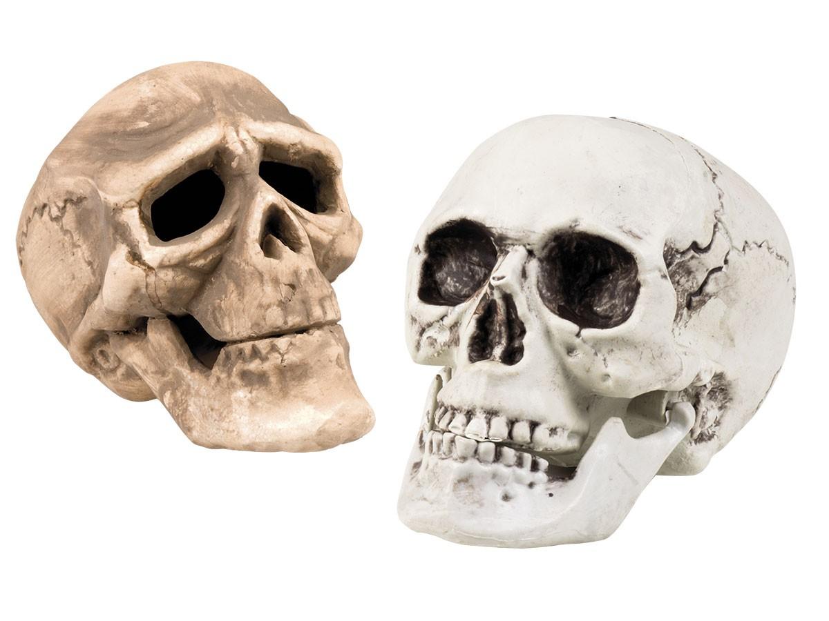 Totenschädel Schädel Totenkopf Figuren Skulptur Halloween Halloweenparty