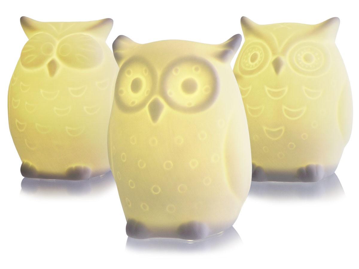 Alsino Led Porzellan Eule 250102 1 Deko Lichteule Owl Dekoration