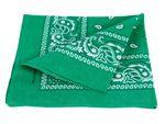Bandana vert motif paisley (Alsino ba-74) de qualité supérieure 100% coton, environ 54 x 54 cm foulard zandana écharpe accessoire vêtement vacances d'été printemps, ballade en moto vélo bateau