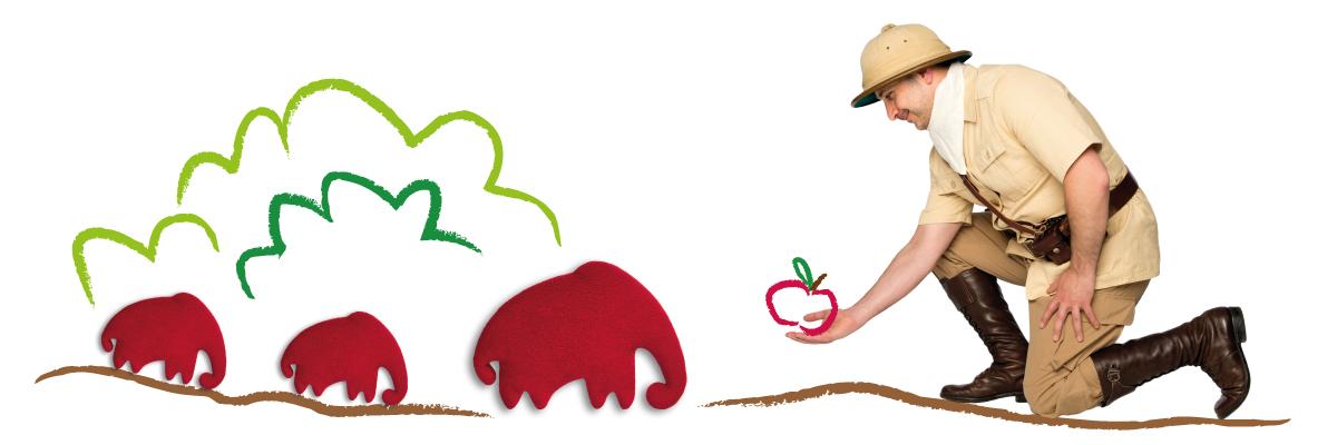 Mann füttert das Wärmekissen-Tier Leschifant mit Äpfeln