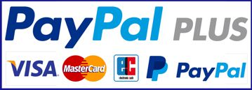 Grafik PayPal plus payment Zahlungsmethode