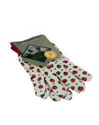 Gartenhandschuhe für Kinder / 1 Paar / Farbe: weiß/rot mit Tomaten-Aufdruck / Größe: 7,5  / Maß eines Handschuhs: ca. 18 x 9 cm / für Kinder ab 3 Jahren