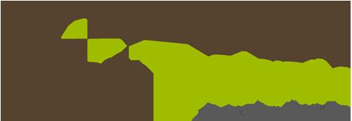 TroniTechnik Logo