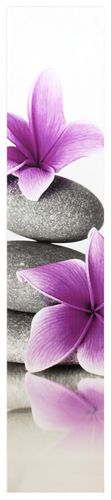 Corner Canvas print 25x120 cm / 9.84 x 47.24  Picture nature flowers white purple