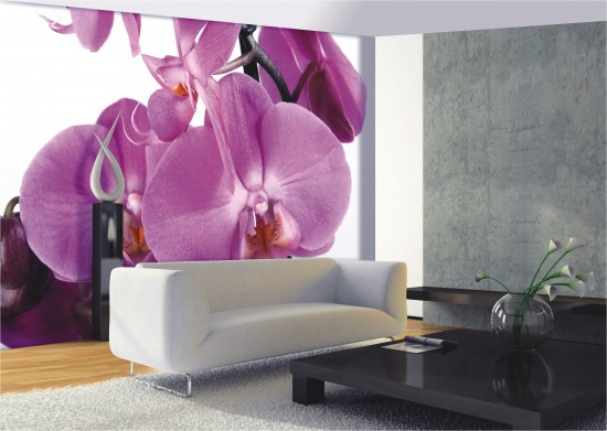 Wall mural wallpaper great orchid flower blossom photo 360 cm x 254 cm / 3.94 yd x 2.78 yd