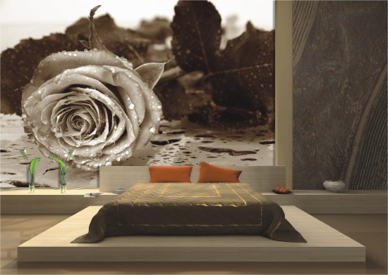 Wall mural wallpaper great rose flower blossom roses anthic photo 360 cm x 254 cm / 3.94 yd x 2.78 yd  cream online kaufen