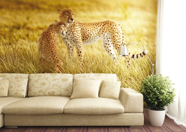 Wall mural wallpaper nature wilderness animals cheetah safari photo 360 cm x 270 cm / 3.94 yd x 2.95 yd online kaufen