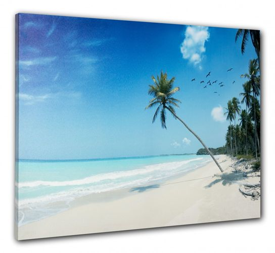 Picture Canvas print mural Beach Palm Sea Holiday Caribic 60x80 cm online kaufen