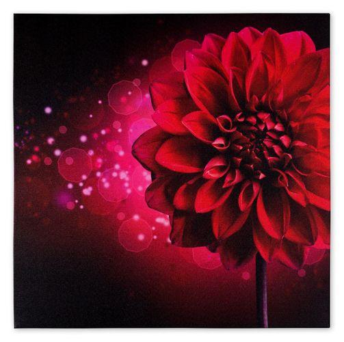Wandbild Fotodruck Keilrahmen Bild Blume pink Dahlie Floral futuristisch 60x60cm online kaufen