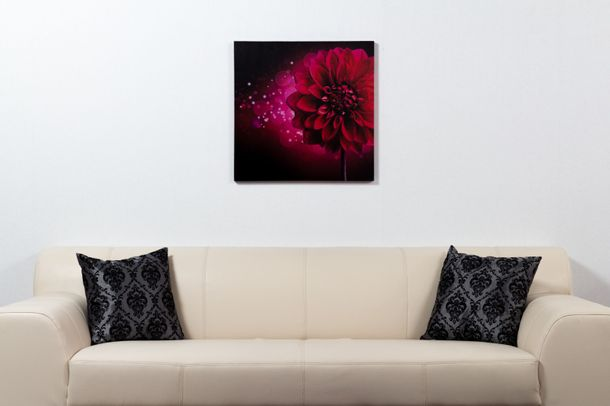 Wandbild Fotodruck Blume pink Dahlie Floral JMH-120402 online kaufen