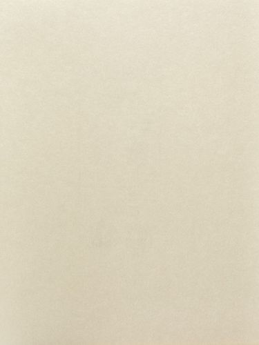 Tapete Rasch Uni creme metallic Cosy White 269375 online kaufen