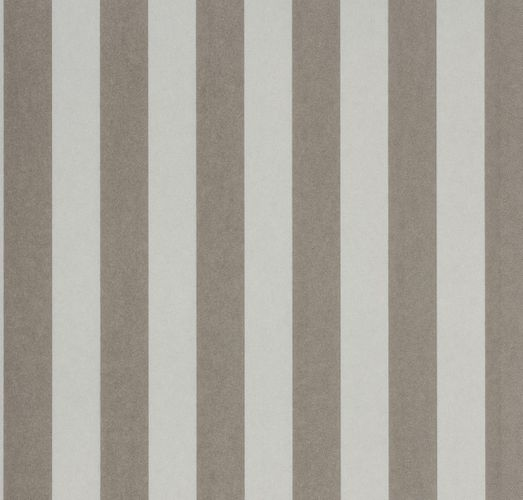 Wallpaper Rasch Textil Strictly Stripes non-woven wallpaper 221618 stripes beige silver