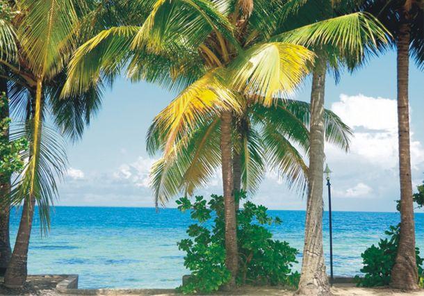 Fototapete Tapete Paradies Insel Palmen Foto 360 x 270 cm online kaufen