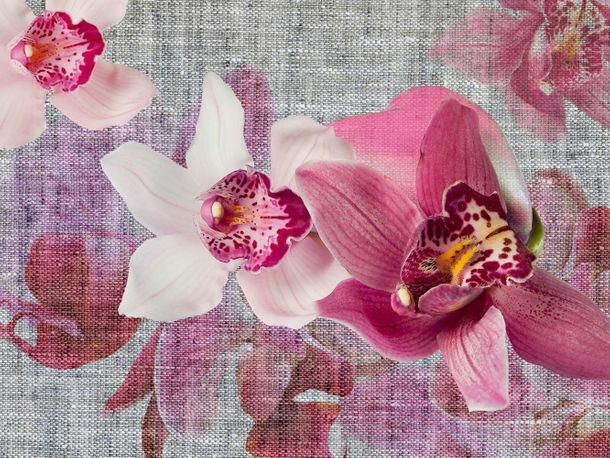 Wall mural wallpaper orchid flowers blossom photo 360 cm x 270 cm / 3.94 yd x 2.95 yd