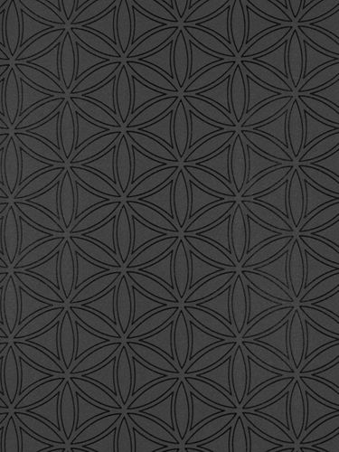 Casa Nova Wallpaper Graham & Brown non-woven wallpaper 20-440 20440 grafic modern black