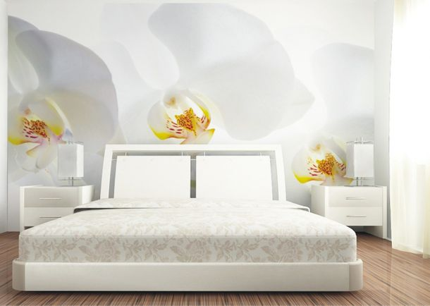 Wall mural wallpaper flower orchid white poster 127 cm x 180 cm/1.39 yd x 1.97yd online kaufen