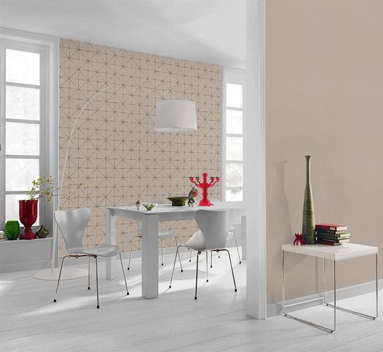 Rasch Home Vision non-woven wallpaper 862713 graphic beige silver online kaufen