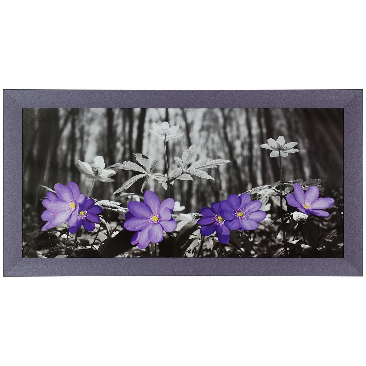 Fotodruck Bilder gerahmt 33x70cm Blumen Wald schwarz weiß