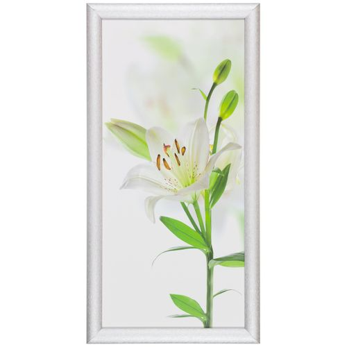 "Canvas print picture wellness flower floral white green 23x49cm 9.06"" x 19.29"""
